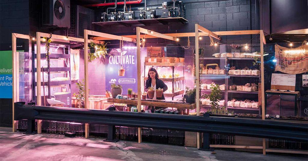 Urban farm in car park - Cultivate, Mirvac